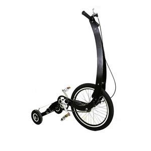 دوچرخه هاف بایک مدل گلدن راک Goldenroc Bicycle Halfbike